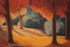 sous les arbres en automne